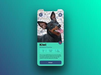 Daily UI 006 User Profile user profile dogs dog pet app pet adoption pets 006 ux design daily ui dailyui