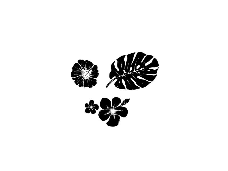 Tropical Floral Illustration greenery plant leaf palm plumeria hibiscus love illustration floral tropical