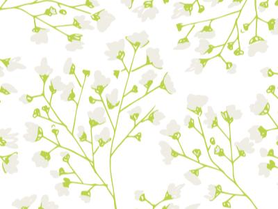 Baby's Breath Floral green spring illustration floral