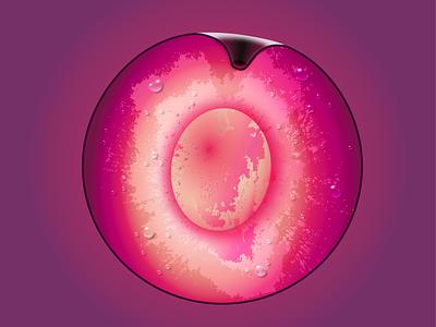 Plum design plum fruit gradient vector illustration