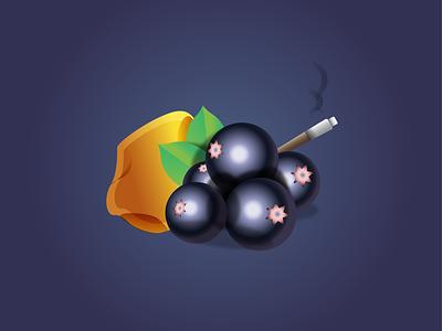 Black Currant, Incense, Amber