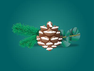 Spruce, Evergreen, Eucalyptus