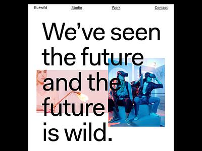 Bukwild.com typography responsive web design brand design website