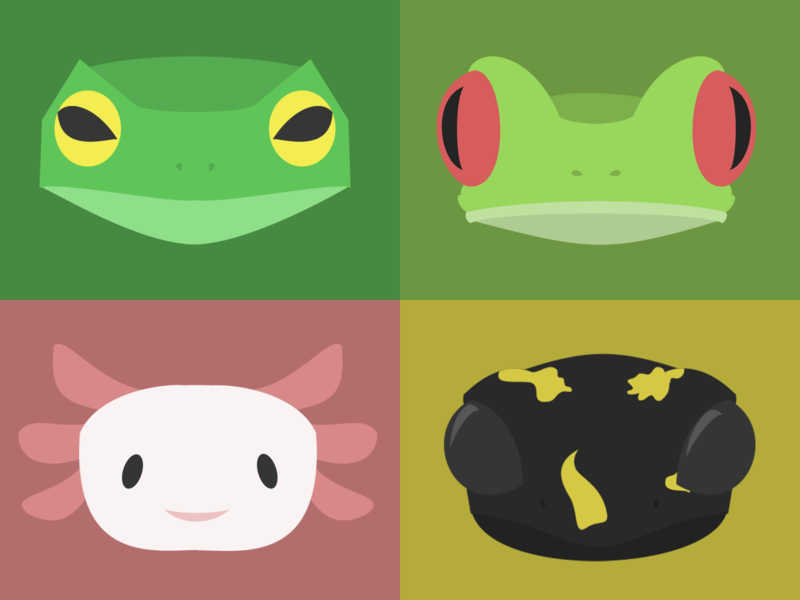 Amphibians Illustration amphibian axolotl salamander frog animals illustrated animals concept illustration design
