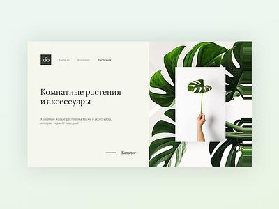 Indoor Plants & Accessories Store Design Concept accessories store green plant concept ux ui web latvia riga
