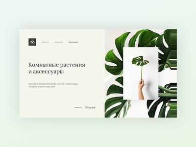 Indoor Plants & Accessories Store Design Concept
