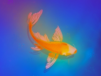 Swim to glory sketches simple glow ideas glory water fish gradient design vibrant colors shadows art vector illustration