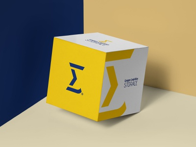 Gruppo Logistica Storace | Box Packaging brand branding design logo design graphic design logistics company logistic logistics logo transport shipping shipping company shipping box brand identity design vector logo branding packaging packaging design box design
