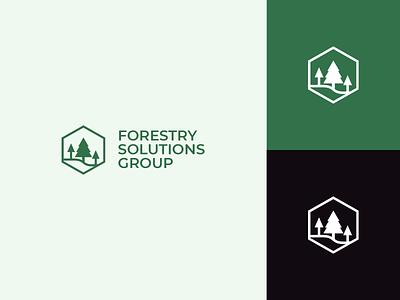 Forestry Client Logo icon business geometric nature trio logo tree logo trees hexagon logo vector art adobe illustrator branding vector illustrator logo design green logo green new zealand fsg forestry