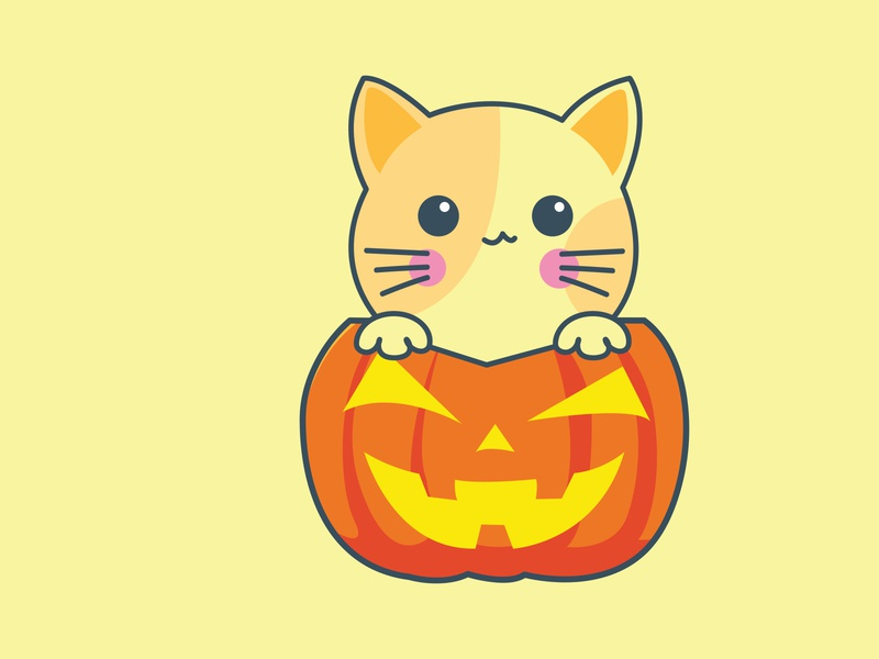 Cute Cat trickortreat halloween pumpkin cat cute colorfull simple graphic art vector flat design illustration