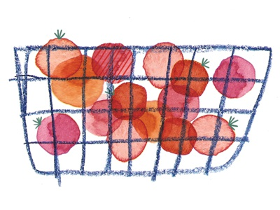 The Essentials—Cherry Tomatoes tomato tomatoes list groceries food illustration watercolour watercolor coloured pencil colored pencil