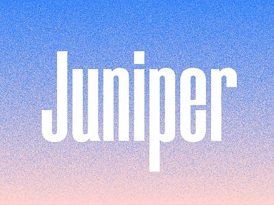 Juniper Condensed font name grit texture condensed juniper typogaphy type