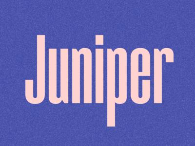 Juniper Condensed v2