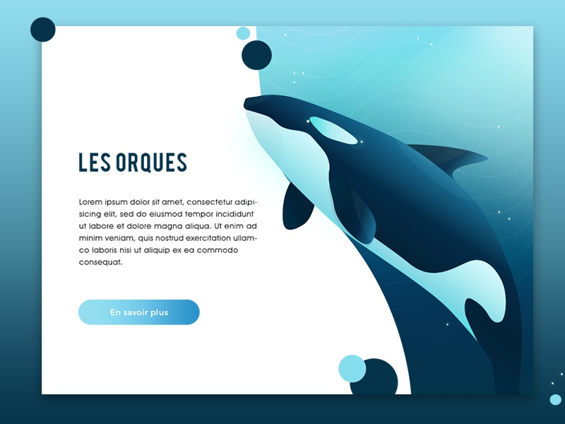 Les orques orqua design web ui