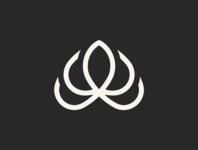 Graphics design work typography art drawing logodesign flat vector branding illustration logo illustrator logo design