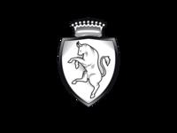 Torino Shield