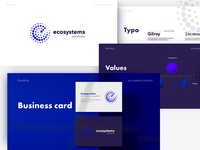 Ecosystems Visual Brand Identity Guidelines guidebook company branding company logo logo design logo styleguide style identity brand design branding