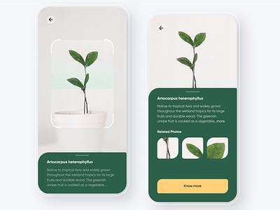 Gardenr - Plant ecommerce app typography clean minimal 2d 3d jackfruit succulent plantshop ecommerce hydroponics planting garden farming agriculture agritech biotech plant app app