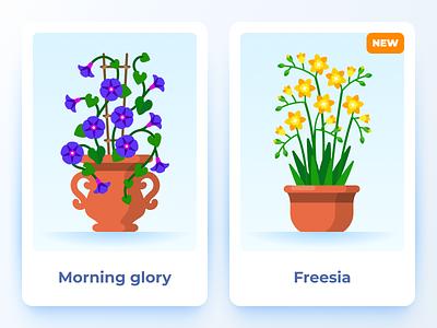 Terrarium: plants and decorations (Morning glory and Freesia) freesia morning glory game flowers plants flat illustration flat vector illustration