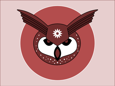 Frequent Drawing Series - 07 drawing graphic illustration face owl