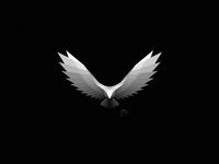 Eagle | Logo Design