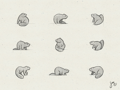 Beaver | Sketches exploration composition simplistic variations logo design concept sketches sketchingtime beaver