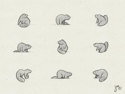 Beaver | Sketches