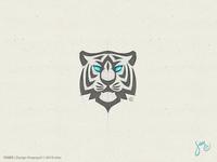Tiger | Sketch