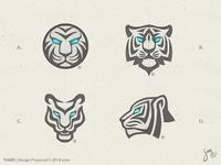Tiger | Sketches