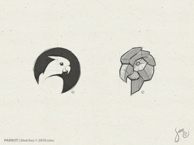 Parrot | Sketches mark icon nature polygon lowpoly negativespace sketch parrot logo bird logo bird
