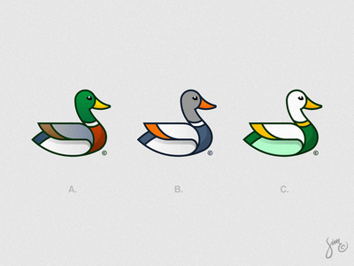 Mallard Duck | Logo Design