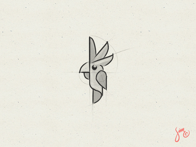 Parrot #05 | Sketch