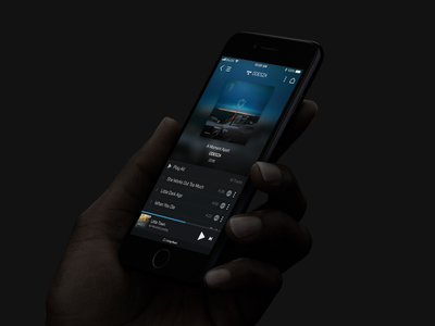 Bluesound ux ui canada germany german project darkmode interaction client abstract sketch multiroom player audio music tidal soundcloud nad sonos bluesound