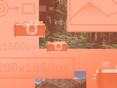 Django Image Management