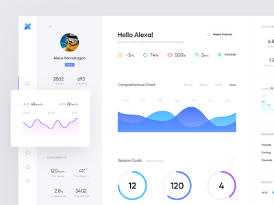 Snowboarding Stats Dashboard activity tracker activity goals sports visualization stats data chart account platform product design interface analytics web clean minimal app dashboad ux ui