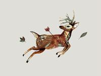 Deer Final
