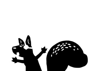 Pirate Squirrel pirate squirrel