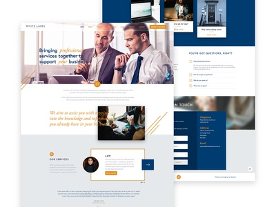 Website Home Page Concept