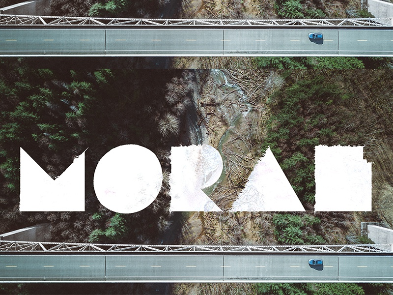Moral river forest white drone aerial displacement geometric type