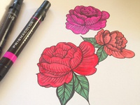 Roses by Hand