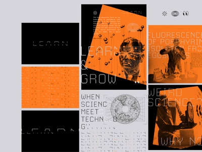 L E A R N branding typography design vector illustration logo