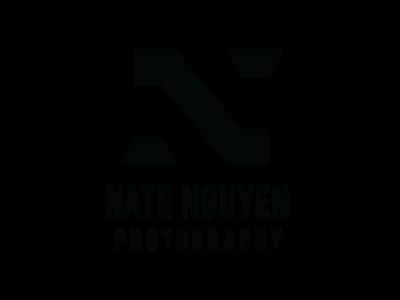 NDN Photography type illustrator art graphic design daily logo dailylogochallenge logo illustration branding design