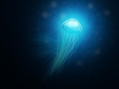 Jellyfish blue playoff illustraion jellyfish fluo