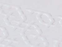 brochure emboss detail