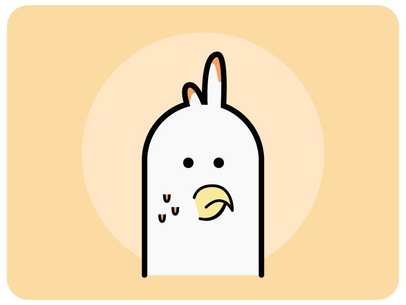 Chicken illustrator pet bird chicken vector illustration