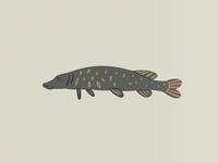 a Fishstick
