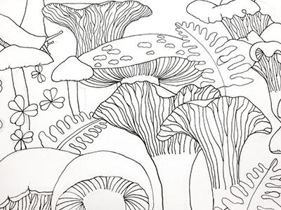 Mushrooms mushrooms pnw coloring book illustration