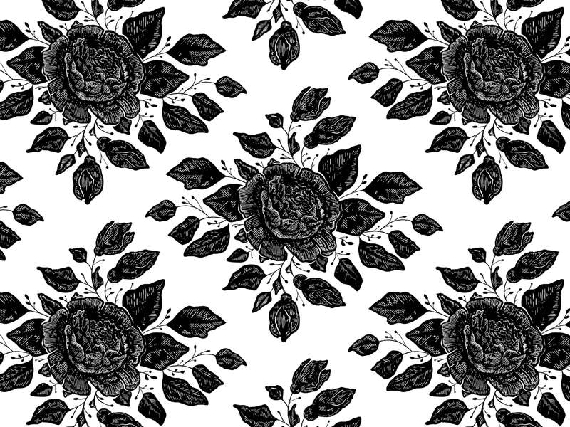 Rose Wallpaper By Bethany Chambers On Dribbble