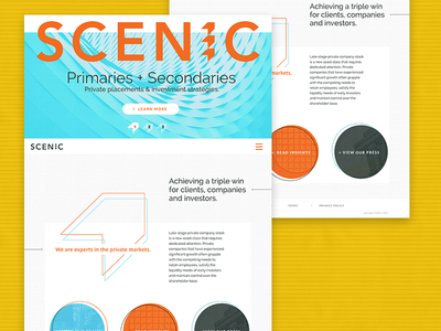 Scenic Homepage flat geometric retro web design website