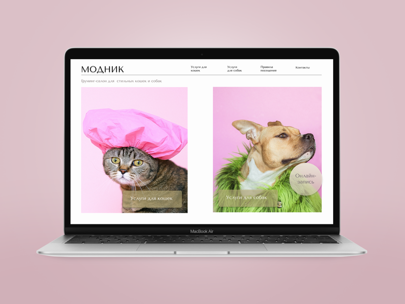 Concept of Grooming salon flat web branding design